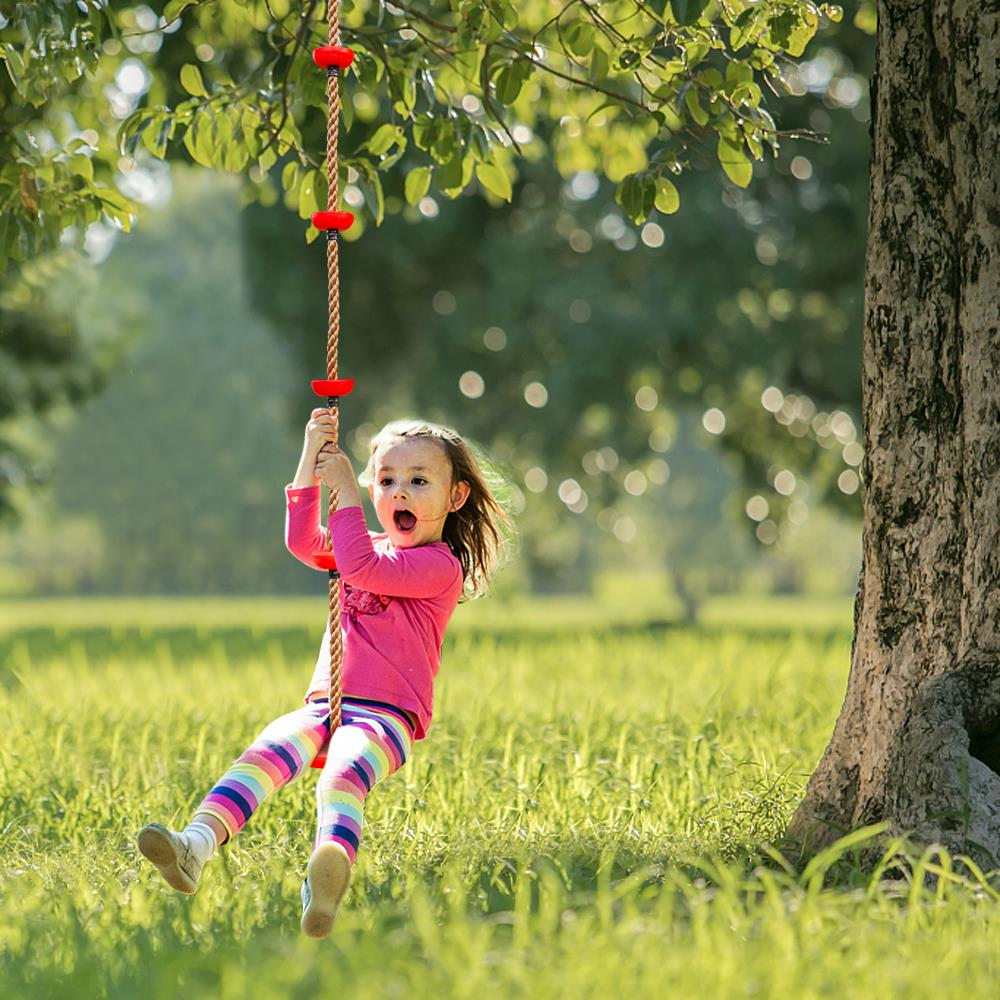 California School District Mistakes Rope Swing for Noose, Pushes Anti-Racism Agenda