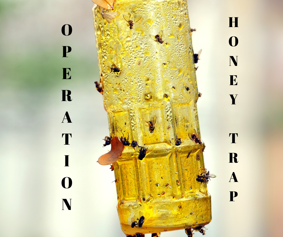 Operation Honey Trap: Democrats Nationwide Caught Red Handed Rigging Our Election [APCT PODCAST]