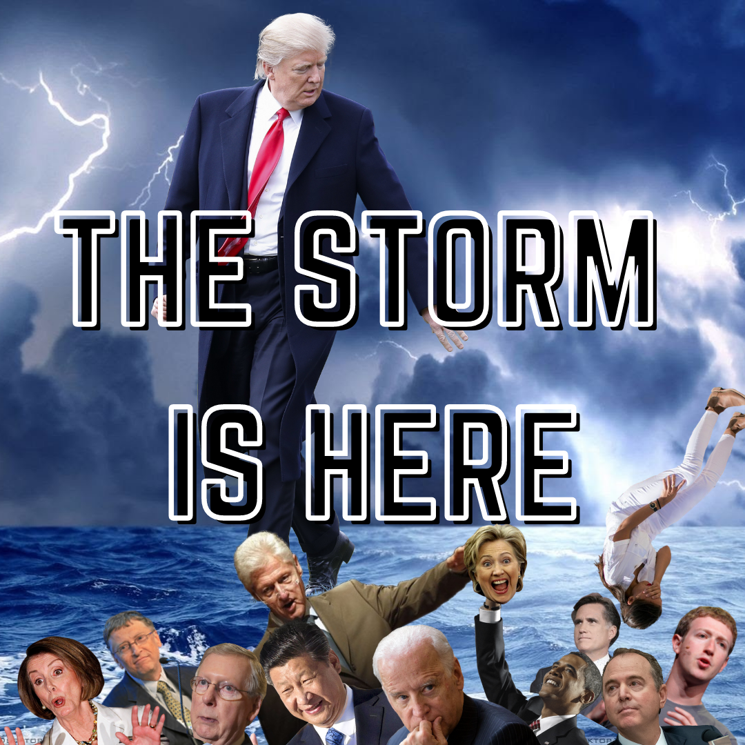 Marshall Report: MY FELLOW AMERICANS, THE STORM IS HERE!