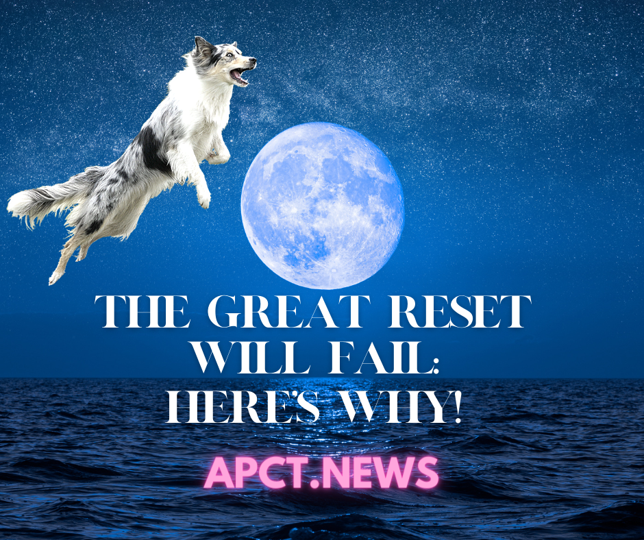 The Great Reset Will FAIL, Here's Why! [APCT Video with KB Flanary]