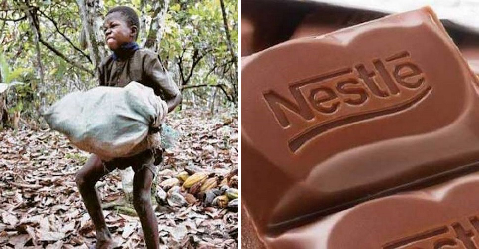 Hershey, Nestlé Sued for Child Slavery